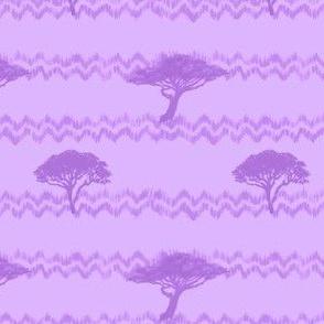 Purple Acacias