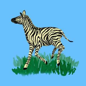 Sky Blue Zebra