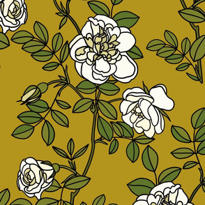 Climbing roses on ochre