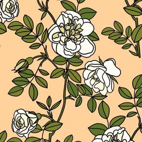 Climbing roses on peach