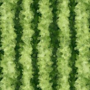 Watermelon Peel Stripes