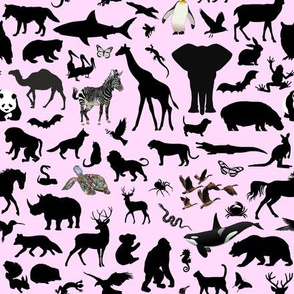 Animal Kingdom - Pink