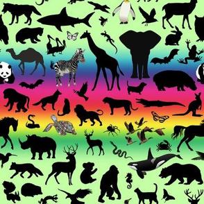 Animal Kingdom - Rainbow, Green