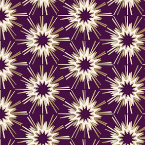 Rich Plum Art Deco Bursts