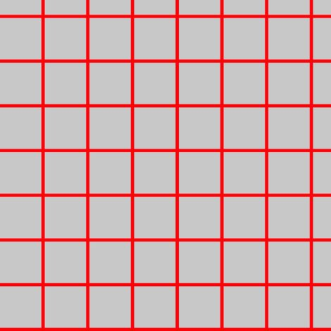 R1-inch-gray-with-red-grid_shop_preview
