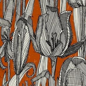 tulip decay rust