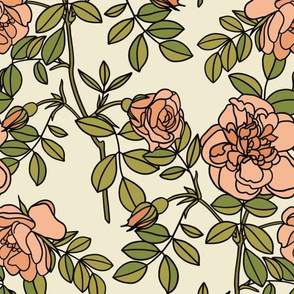Climbing roses in coral pink - small