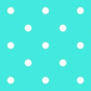 Polka Dotties // White on Turquoise