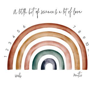 1 METER // IVF Rainbow Baby milestone blanket