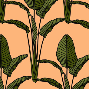 Banana leaves on peach