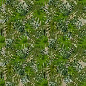 TropicalLeavesColor