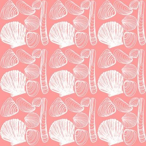Shells on Pink Coral small