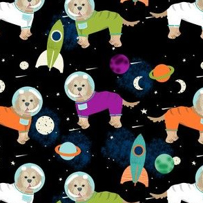 cockapoo space dogs