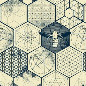 The Honeycomb Conjecture-reversed
