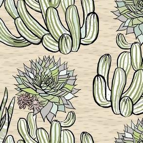 sustaining succulents