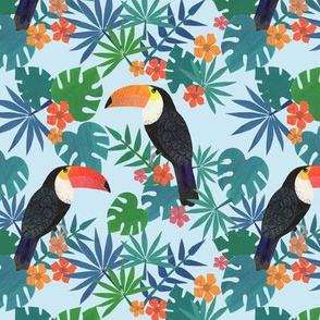 just a little toucan