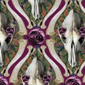 Roses & Bones