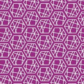 Fuchsia Hexagon