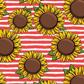 Sunflowers - red stripes C19BS