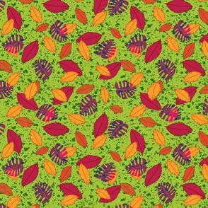 Leaves of Banana 1600
