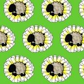 Rdaisy-sheep_shop_thumb