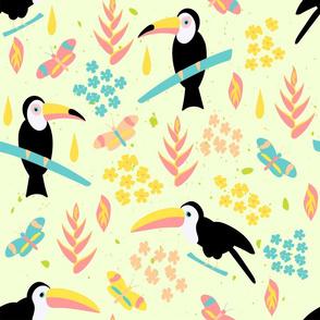toucans bohemian paradise