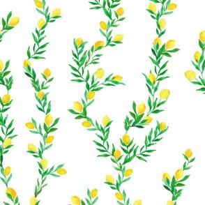watercolor lemon vines on white   large scale