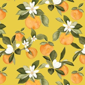 Orange Blossom on Yellow