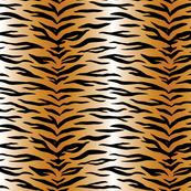 tiger (small scale)