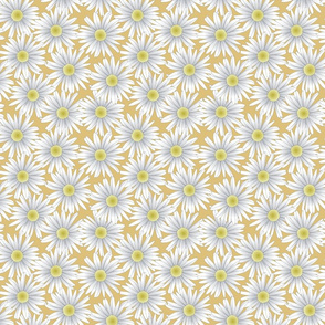 Daisies on Gold Background