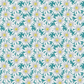 Daisies on a Teal Background