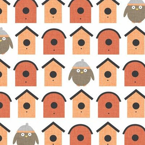 Orange Little Birdie P14a1