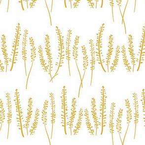 Sunny Prairie Field Reverse