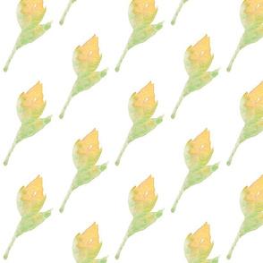 Summer Watercolor Yellow Bud