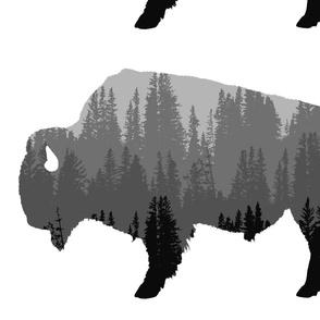 bison2 panel