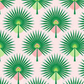 Fan Palm Leaves on Pink