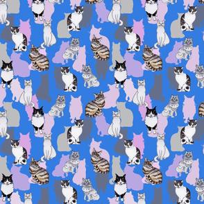 Cats Blue Ground