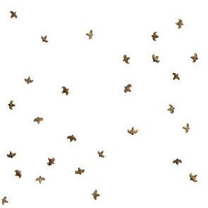 Birch Seed Birds scattered