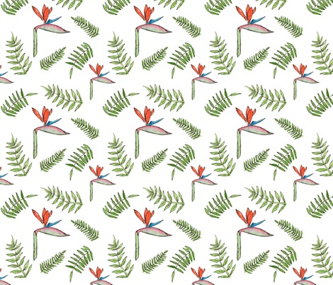 Rrrbirds-of-pardise-repeating-pattern_contest239005preview