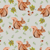 Squirrels and acorns on grey