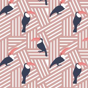 Geometric Toucans