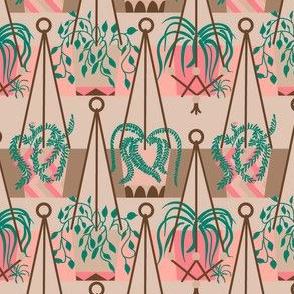 Bohemian Hanging plants
