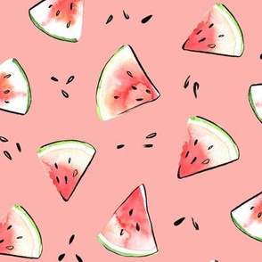 Pink watermelon watercolor