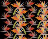Rboho-bird-of-paradise-2_thumb