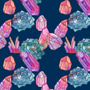 crystals and succulents on navy