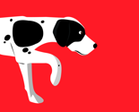 Rrpoint-dog_dog-trace_thumb