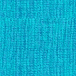 Textured Solid - Resort Aqua Blue