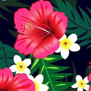 Tropic Love