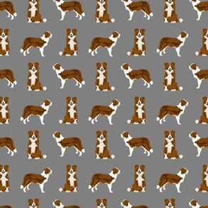 SMALL - border collie red coat dog breed fabric grey