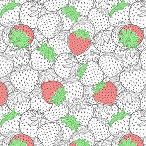 Strawberry texture